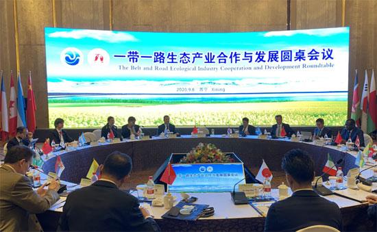 """陈德海秘书长参加""""一带一路""""生态产业合作与发展圆桌会"""