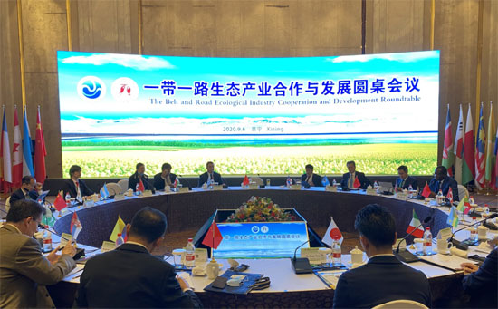 ACC Secretary-General Chen Dehai Attended the 2020 Belt and Road Roundtable on Ecological Industry Cooperation and Development