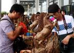 中國-東盟博覽會:東南亞沉香木受歡迎