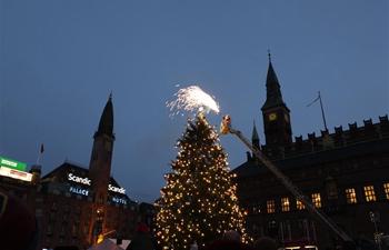 Christmas trees lit in Copenhagen, Denmark